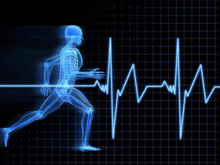 حدنصاب تراز دعوت به مصاحبه دکتری فیزیولوژی ورزشی (کد 2116)