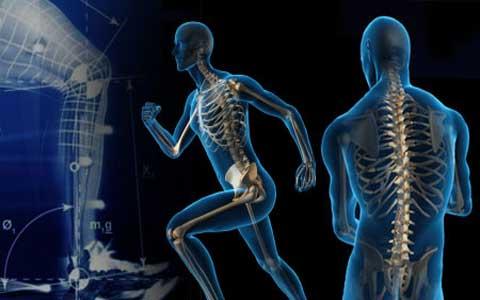 حدنصاب تراز دعوت به مصاحبه دکتری بیومکانیک ورزشی (کد 2119)