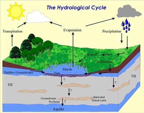 حدنصاب تراز دعوت به مصاحبه دکتری زمینشناسی – آبهای زیرزمینی (کد 2204)