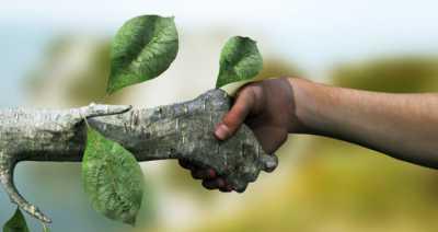 حدنصاب تراز دعوت به مصاحبه دکتری محیط زیست