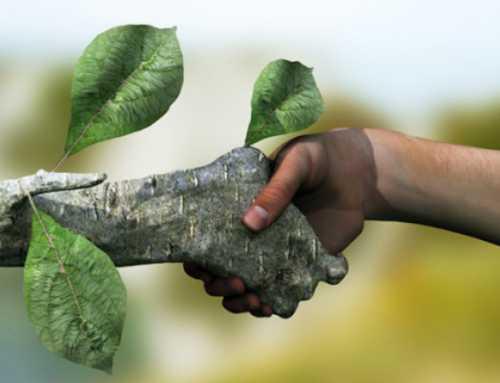 حدنصاب تراز دعوت به مصاحبه دکتری محیطزیست (کد 2177)