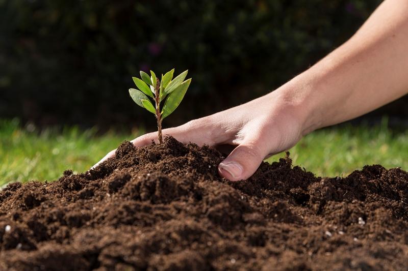 حدنصاب تراز دعوت به مصاحبه دکتری حاصلخیزی و زیست فناوری خاک