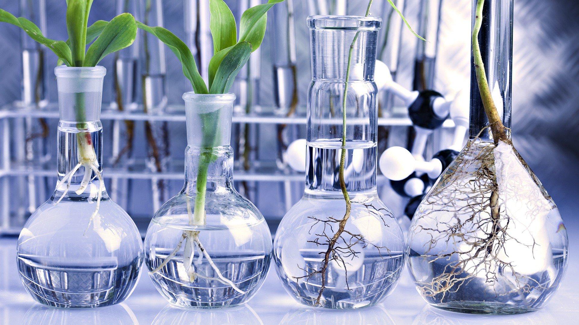 حدنصاب تراز دعوت به مصاحبه دکتری بیوتکنولوژی کشاورزی