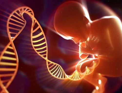 حدنصاب تراز دعوت به مصاحبه دکتری ژنتیک مولکولی (کد 2228)