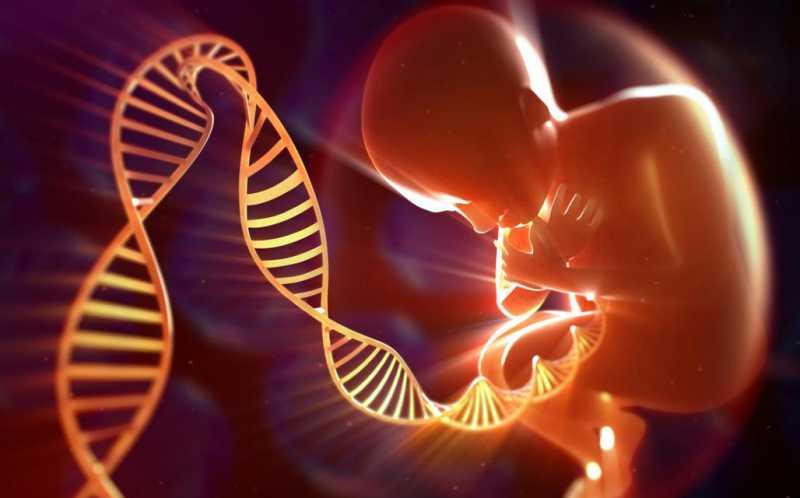 حدنصاب تراز دعوت به مصاحبه دکتری ژنتیک مولکولی