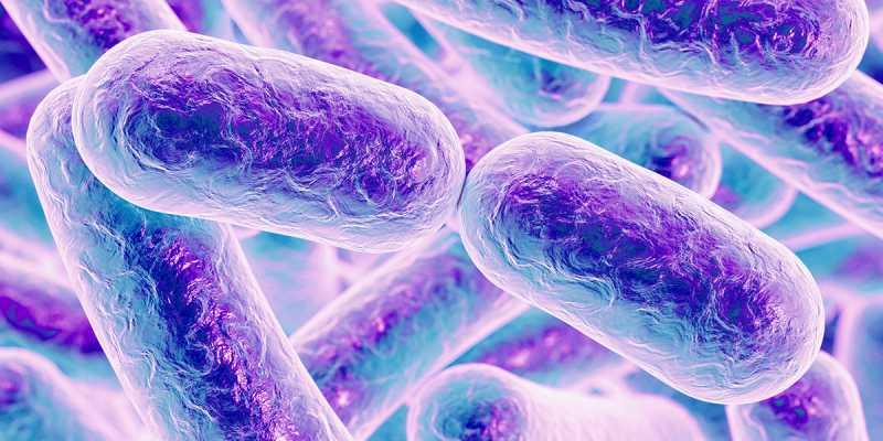حدنصاب تراز دعوت به مصاحبه دکتری میکروبیولوژی