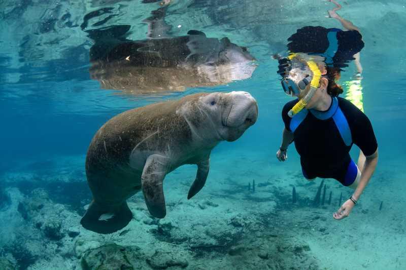 حدنصاب تراز دعوت به مصاحبه دکتری زیست شناسی دریا