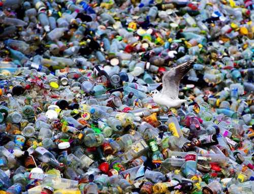 حدنصاب تراز دعوت به مصاحبه دکتری مهندسی محیط زیست – مواد زائد جامد (کد 2345)