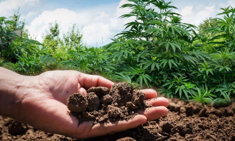 حدنصاب تراز دعوت به مصاحبه دکتری مدیریت منابع خاک