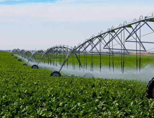 حدنصاب تراز دعوت به مصاحبه دکتری علوم و مهندسی آب – آبیاری و زهکشی (کد 2427)