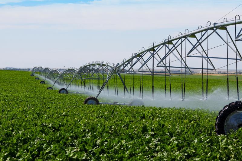 حدنصاب تراز دعوت به مصاحبه دکتری مهندسی آب - آبیاری و زهکشی