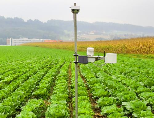 حدنصاب تراز دعوت به مصاحبه دکتری علوم و مهندسی آب – هواشناسی کشاورزی (کد 2430)