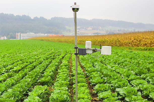 حدنصاب تراز دعوت به مصاحبه دکتری هواشناسی کشاورزی
