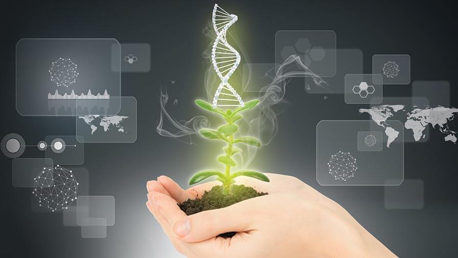 حدنصاب تراز دعوت به مصاحبه دکتری ژنتیک و بهنژادی گیاهی (کد 2431)